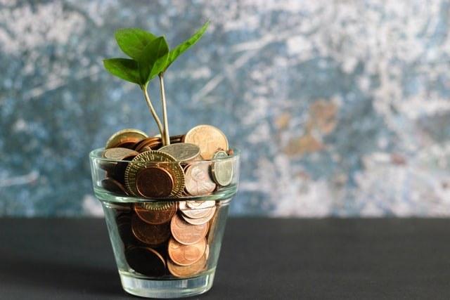 Inexpensive Seeds